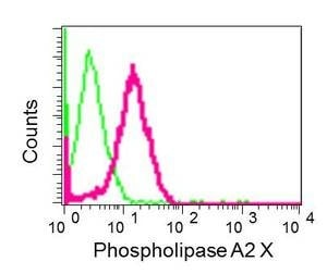 Flow Cytometry (Intracellular) - Anti-sPLA2-X antibody [EPR11202] - BSA and Azide free (ab249370)