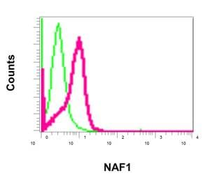 Flow Cytometry - Anti-NAF1 antibody [EPR11516] - BSA and Azide free (ab249634)