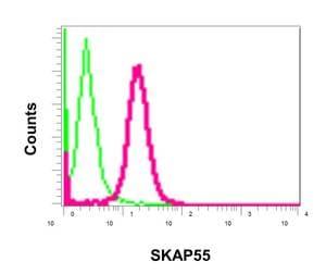 Flow Cytometry - Anti-SKAP55 antibody [EPR11359] - BSA and Azide free (ab249666)