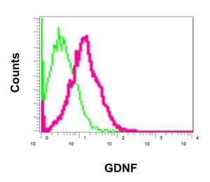 Flow Cytometry (Intracellular) - Anti-GDNF antibody [EPR2714(N)] - BSA and Azide free (ab249924)
