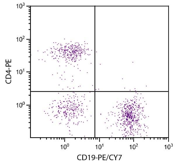 Flow Cytometry - Anti-CD19 antibody [6D5] (PE/Cy7 ®) (ab25509)