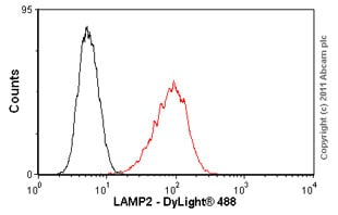 Flow Cytometry -抗LAMP2抗体[H4B4] - Lysosome Marker(AB25631)