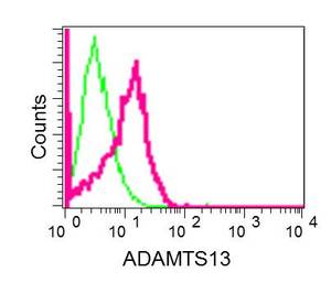 Flow Cytometry - Anti-ADAMTS13 antibody [EPR6132] - BSA and Azide free (ab250014)