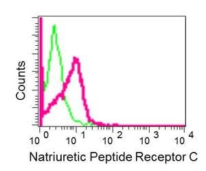 Flow Cytometry - Anti-NPR-C antibody [EPR12716] - BSA and Azide free (ab250024)
