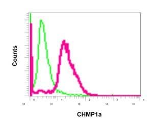 Flow Cytometry - Anti-CHMP1a antibody [EPR11939] - BSA and Azide free (ab250060)