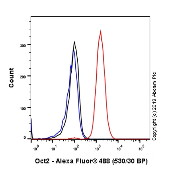 Flow Cytometry - Anti-Oct-2 antibody [EPR12482] - BSA and Azide free (ab250114)