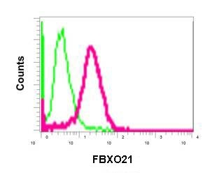 Flow Cytometry - Anti-FBXO21 antibody [EPR13163] - BSA and Azide free (ab250120)