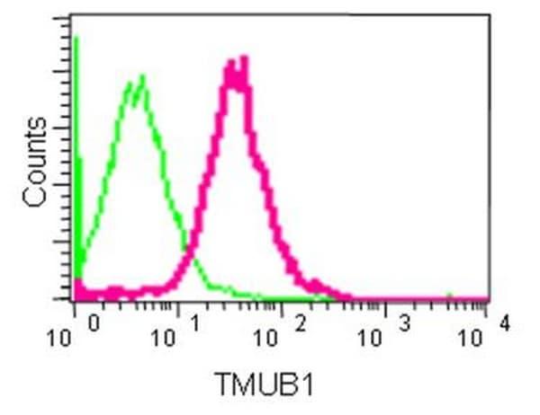 Flow Cytometry - Anti-TMUB1 antibody [EPR14066] - BSA and Azide free (ab250234)