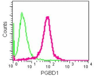 Flow Cytometry (Intracellular) - Anti-PGBD1 antibody [EPR13883] - BSA and Azide free (ab250242)
