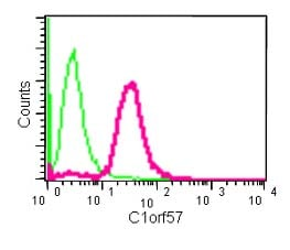 Flow Cytometry - Anti-Nucleoside triphosphate phosphohydrolase antibody [EPR14325] - BSA and Azide free (ab250596)