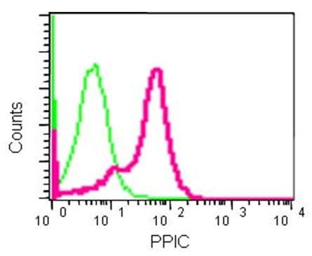 Flow Cytometry - Anti-PPIC antibody [EPR15355] - BSA and Azide free (ab250754)
