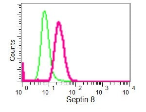 Flow Cytometry (Intracellular) - Anti-Septin 8 antibody [EPR16099] - BSA and Azide free (ab251065)