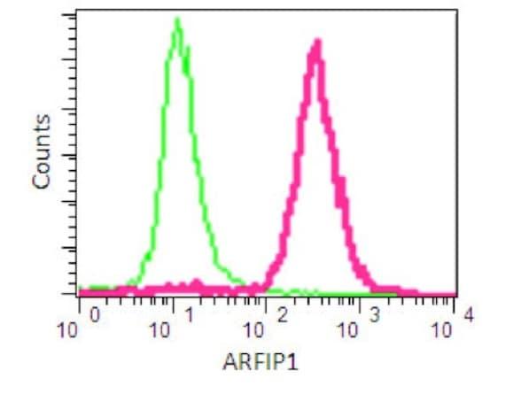 Flow Cytometry - Anti-Arfaptin-1 antibody [EPR16360] - BSA and Azide free (ab251081)