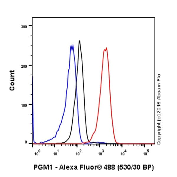 Flow Cytometry (Intracellular) - Anti-PGM1 antibody [EPR15241] - BSA and Azide free (ab251158)