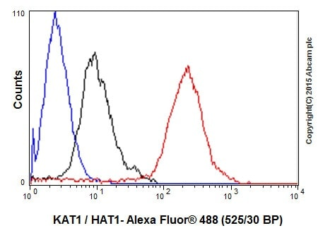 Flow Cytometry (Intracellular) - Anti-KAT1 / HAT1 antibody [EPR18775] - BSA and Azide free (ab251185)