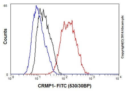 Flow Cytometry - Anti-CRMP1 antibody [EP14521] - BSA and Azide free (ab251288)