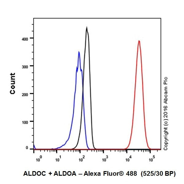 Flow Cytometry - Anti-Aldolase+Aldolase C antibody [EPR19355] - BSA and Azide free (ab251296)