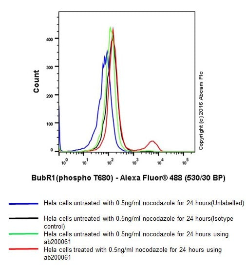 Flow Cytometry - Anti-BubR1 (phospho T680) antibody [EPR19958] - BSA and Azide free (ab251297)