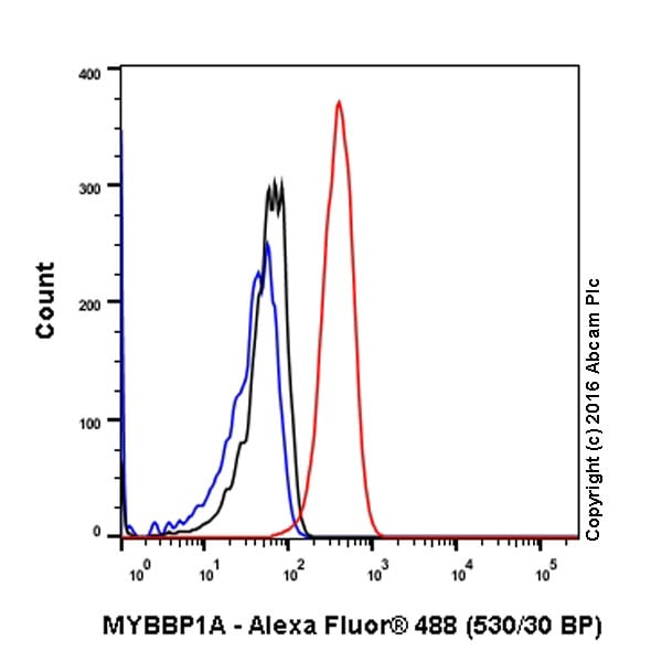Flow Cytometry - Anti-MYBBP1A antibody [EPR7205] - BSA and Azide free (ab251384)