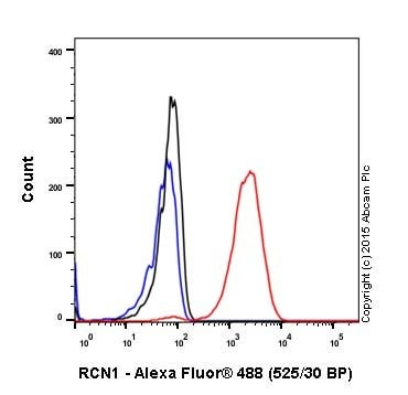 Flow Cytometry - Anti-RCN1/RCN antibody [EPR17163-117] - BSA and Azide free (ab251515)