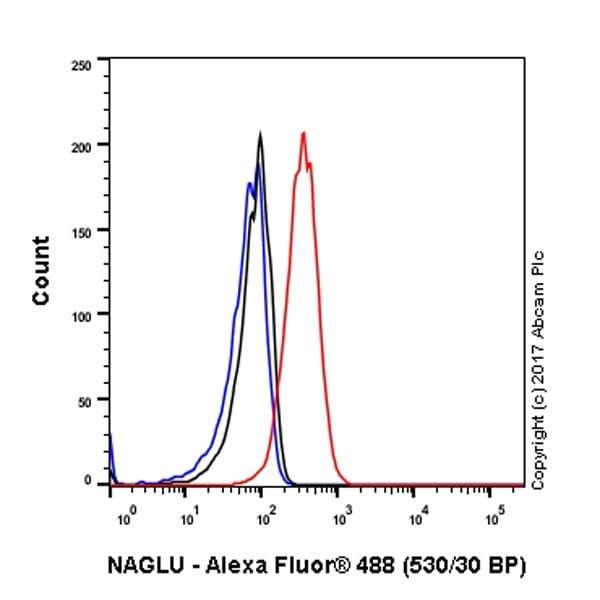 Flow Cytometry (Intracellular) - Anti-NAGLU/NAG antibody [EPR20708] - BSA and Azide free (ab251547)