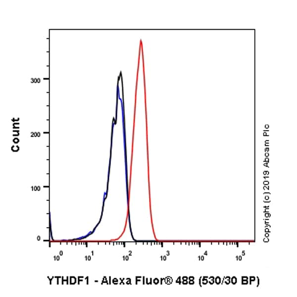 Flow Cytometry - Anti-YTHDF1 antibody [EPR22349-16] (ab252346)