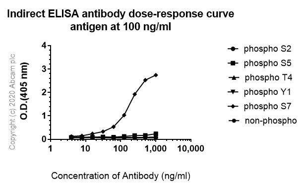 ELISA - Anti-RNA polymerase II CTD repeat YSPTSPS (phospho S7) antibody [4E12] (ab252853)