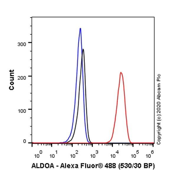 Flow Cytometry - Anti-Aldolase antibody [EPR23181-39] (ab252953)