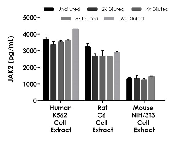 Interpolated concentrations of native JAK2 in human K562 cell extract based on a 1,000 µg/mL extract, rat C6 cell extract based on a 1,000 µg/mL extract, and mouse NIH/3T3 based on a 500 µg/mL extract