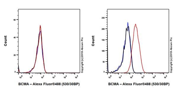Flow Cytometry - Anti-BCMA antibody [EPR22457-260] (ab253242)