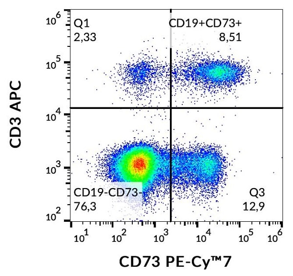 Flow Cytometry - PE/Cy7® Anti-CD73 antibody [AD2] (ab253253)