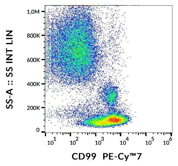 Flow Cytometry - PE/Cy7® Anti-CD99 antibody [3B2/TA8] (ab253260)