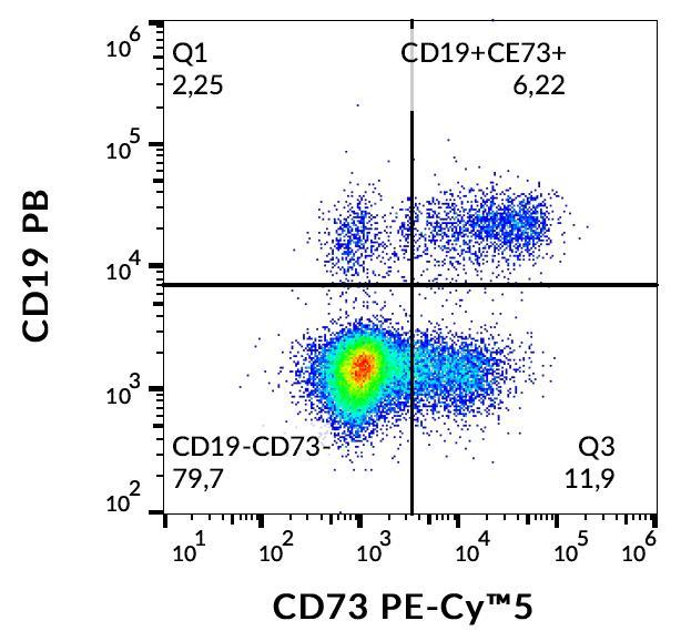 Flow Cytometry - PE/Cy5® Anti-CD73 antibody [AD2] (ab253267)