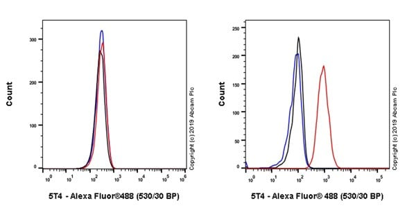Flow Cytometry - Anti-5T4 antibody [B3F1] (ab254168)