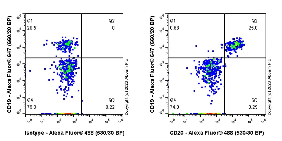 Flow Cytometry - Anti-CD20 antibody [PDR78] (ab254189)