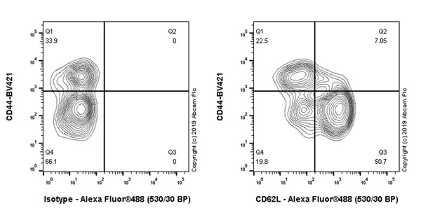 Flow Cytometry - Anti-CD62L antibody [EPR17012-27] - BSA and Azide free (ab254203)