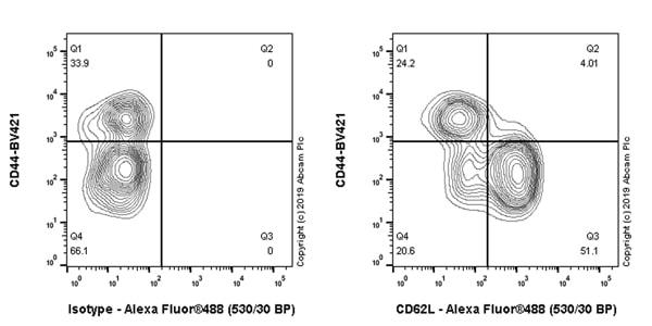 Flow Cytometry - Anti-CD62L antibody [EPR17012-35] - BSA and Azide free (ab254204)