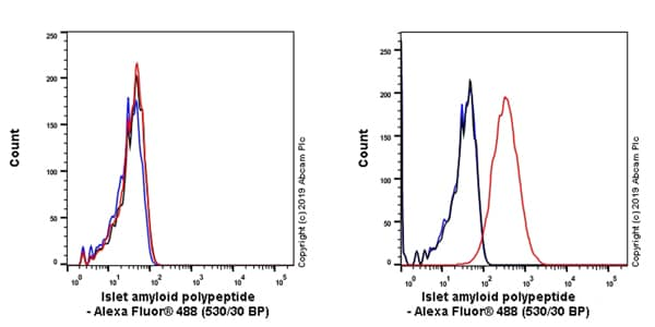 Flow Cytometry - Anti-Amylin/DAP antibody [EPR22556-138] (ab254259)