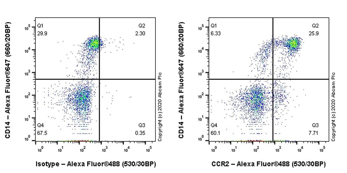 Flow Cytometry - Anti-CCR2 antibody [EPR23494-47] (ab254375)
