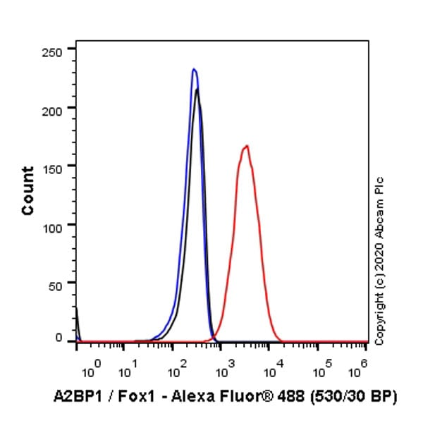 Flow Cytometry - Anti-A2BP1/Fox1/RBFOX1 antibody [EPR23627-50] (ab254412)