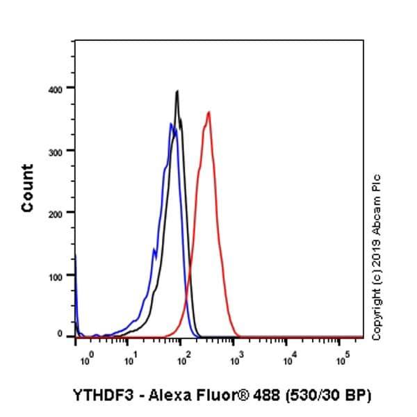 Flow Cytometry - Anti-YTHDF3 antibody [EPR21912-3] - BSA and Azide free (ab255267)