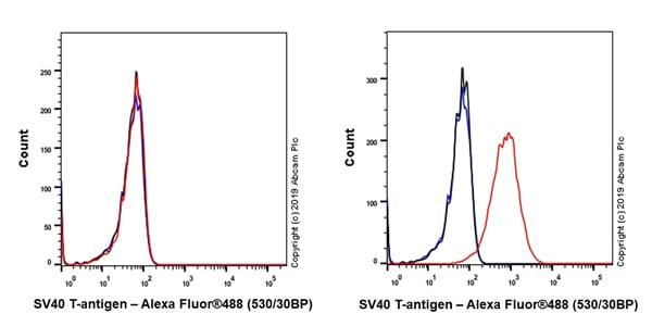 Flow Cytometry (Intracellular) - Anti-SV40 T-antigen antibody [EPR22694-148] - BSA and Azide free (ab255286)