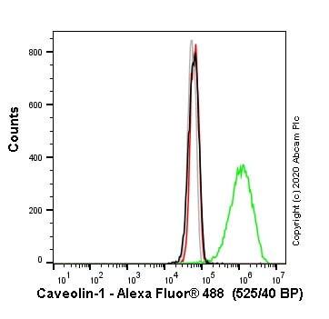 人小窝流式细胞术(AB1-531细胞)敲除
