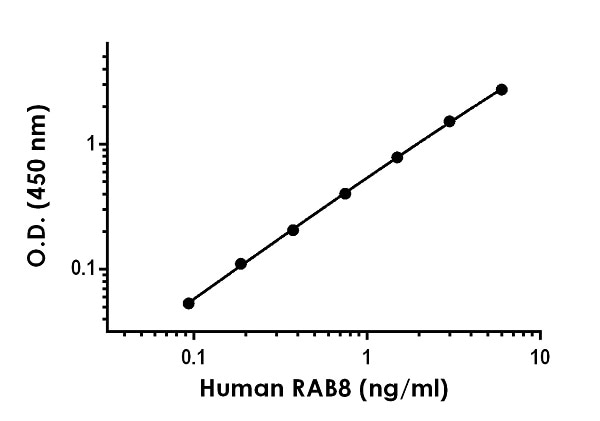 Example of human RAB8 standard curve in 1X Cell Extraction Buffer PTR.