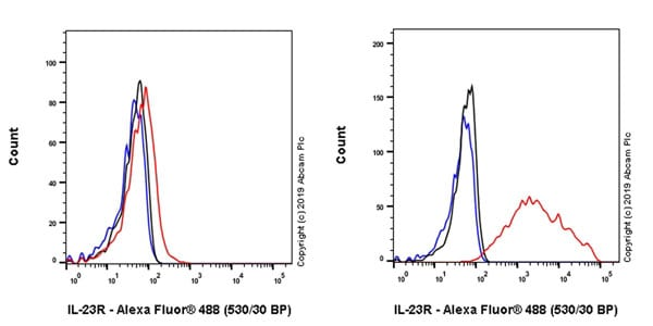 Flow Cytometry - Anti-IL-23R antibody [EPR22838-4] - BSA and Azide free (ab255964)