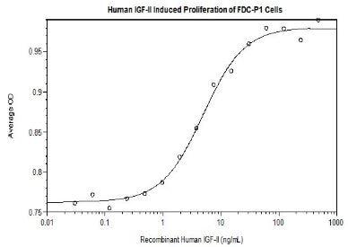 Functional Studies - Recombinant human IGF2 protein (Active) (ab256027)
