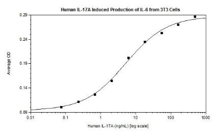 Functional Studies - Recombinant human IL-17A protein (ab256041)