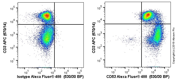 Flow Cytometry - Alexa Fluor® 488 Anti-CD53 antibody [MRC OX-44] (ab256285)