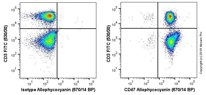 Flow Cytometry - APC Anti-CD47 antibody [OX-101] (ab256293)