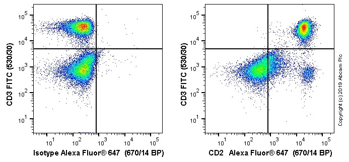 Flow Cytometry - Alexa Fluor® 647 Anti-CD2 antibody [OX34] (ab256295)